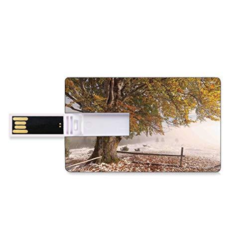 32GB Unidades Flash USB Flash Hojas Forma de Tarjeta de crédito bancaria Clave Comercial U Disco de Almacenamiento Memory Stick Abedules de un Gran árbol en la Primera caída de Nieve Diciembre País B