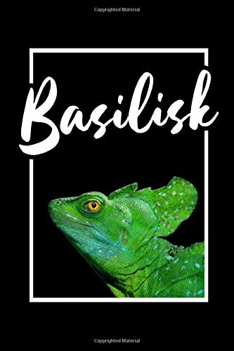 Green Basilisk Notebook: Do you own a pet basilisk or a Jesus Lizard? This notebook makes a perfect gift for anyone who loves reptiles and lizards.