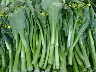Best yu choy plant Reviews