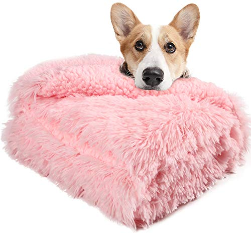 LOCHAS Luxury Velvet Fluffy Dog Blanket, Extra Soft and Warm Sherpa Fleece Pet Blankets for Dogs Cats, Plush Furry Faux Fur Puppy Throw Cover, 20