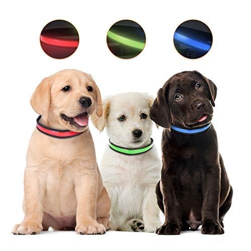 Grsta Collar Perro,Collar para Perros Collar de Seguridad , Collar Luminoso Perro Recargable y Impermeable, 3 Modos Collar LED Perro Ajustable para Perros Pequeños Medianos Grandes