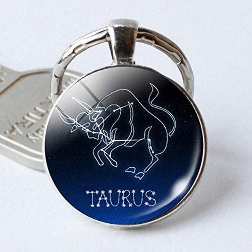 keyjiang Verjaardagscadeau Cool Astrologie sterrenbeeld sleutelhanger glas sieraden zilver A