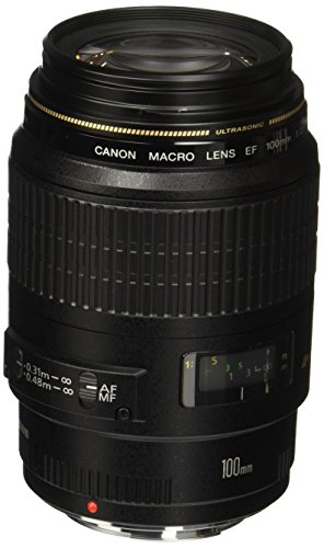 Canon EF 100mm f/2.8 Macro USM Fixed Lens for...