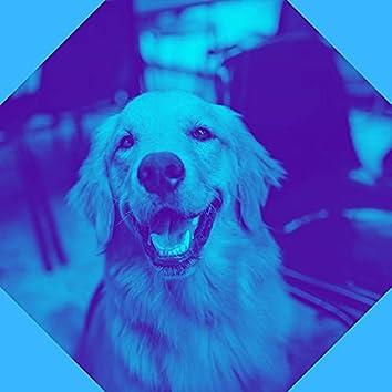 Hemels Lopende Honden