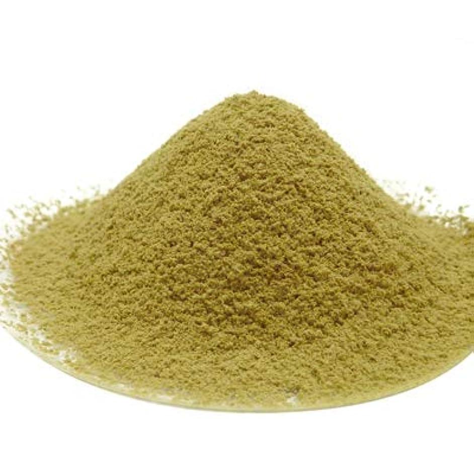 フォーラム巨大非公式【まとめ買い用】モリンガ パウダー 1kg(500g×2個) 青汁 粉末 100% サプリメント お茶 ハーブティー