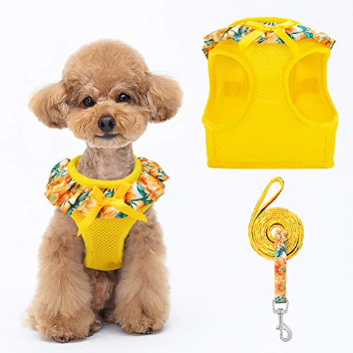 BINGPET Sunflower Lace Dog Harness and Leash Set, Soft and Comfortable Mesh Puppy Vest Harness Pet Harnesses with Ribbon Bowtie for Small Dogs, Puppies, Cats