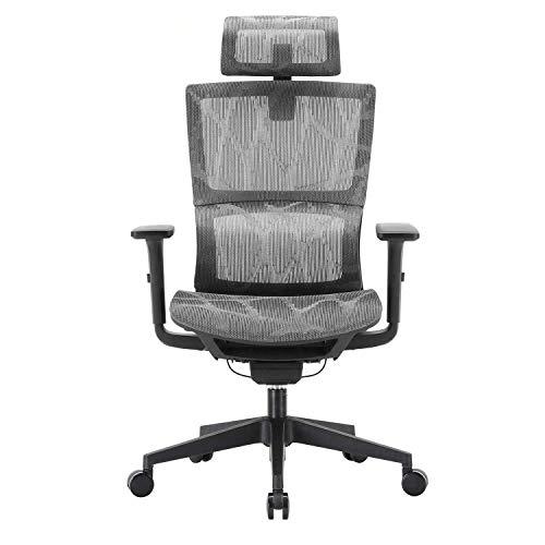 ViewSys Silla de oficina, Silla de oficina ergonómico, con un apoyo cómodo lumbar y apoyabrazos regulables en 3D, mesa de ordenador y una silla con asiento de malla y espalda alta, silla giratoria mul