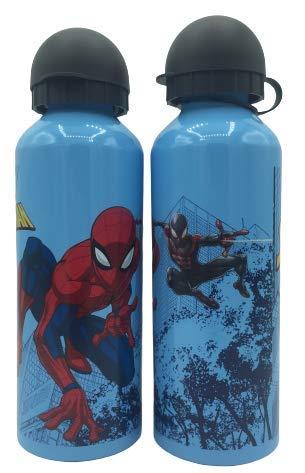 ML Una Botella de Agua de Aluminio, cantimplora termica a Prueba de Fugas sin BPA para Levar a la Escuela y Deportes el Termo 500ml para ninos y ninas (Azul)