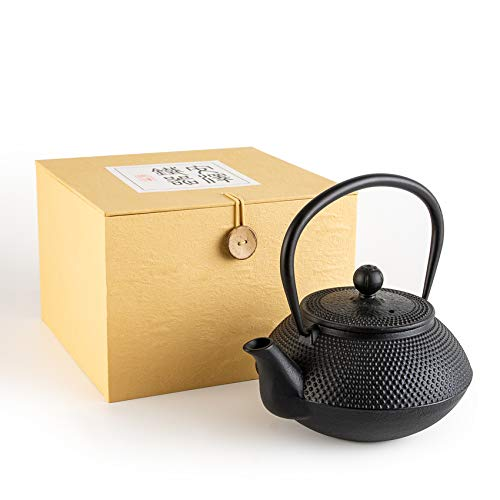 SUSTEAS Tetsubin Cast Iron Teapot with Stainless Steel Infuser Japanese tea pot kettle (29oz)