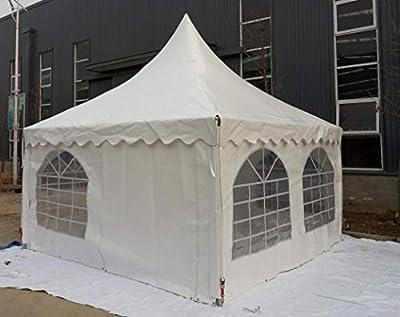 5x5 m Tienda de fiestas fumar Pabellón jardín PVC 650 g: Amazon.es: Jardín