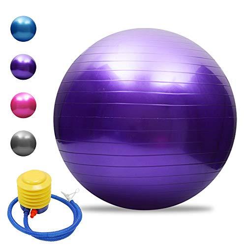 TOMSHOO Anti-Burst Yoga Ball verdickt Stabilit?t Balance Ball Pilates Barre k?rperliche Fitness Gymnastikball 45CM / 55CM / 65CM / 75CM Geschenk Luftpumpe