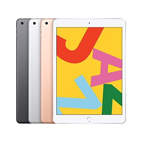 Apple iPad (10.2-inch, Wi-Fi, 32GB) - Space Grey (Latest Model)