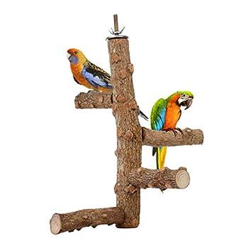 DEDC Perchoir de Perroquet Jouet Branches, Support d'Activité en Bois pour Petits Oiseaux Perroquets Stand Escalade