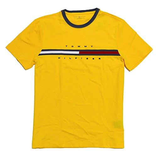 Tommy Hilfiger Mens Classic Fit Big Logo T-Shirt (Blazing Yellow, Large)