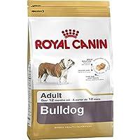 RC Bulldog