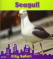 Seagull (Read and Learn: City Safari)