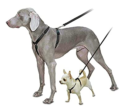 PetSafe Sure-Fit Harness, Adjustable Dog Harness from the Makers of the Easy Walk Harness, BLACK, MEDIUM from Toys & Behavior