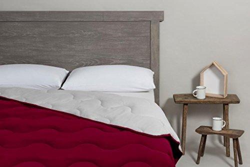 SEASONS Velfont - Edredón Nórdico Nordicolor Bicolor 300 gr Fibra Hueca Siliconada Varias Medidas y Colores (Perla Granate, 150 x 220)
