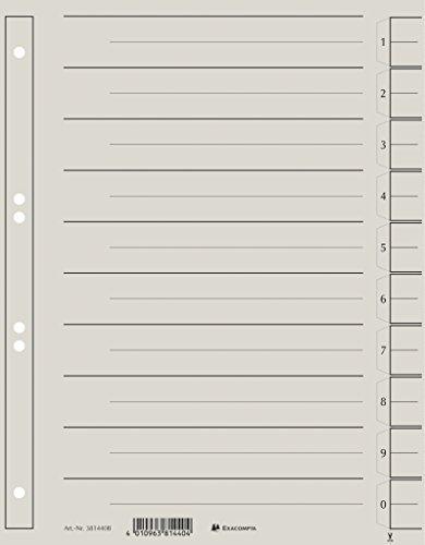Exacompta 381440B Trennblättern (Kraftkarton, 230g, 6 fach Lochung, Organisationsdruck, DIN A4) 100er Pack grau