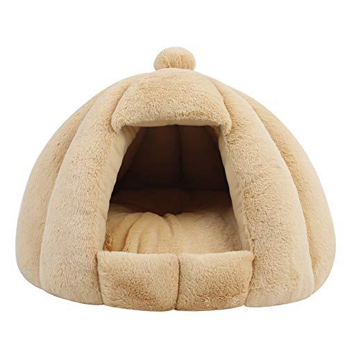 QINYA Katzenhaus Katzenhöhle für Katzen Winterfest Katzenhöhle Faltbar Hautier Haus mit Abnehmbarem Matratze Weich und Warm für Hund Katze (XL 60 * 50CM,Beige)