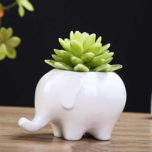 TIANTIAN Elephant White Ceramic Planter Pot Succulent Planter Flower Plant Pot Mini Tiny Flower Plant Containers Cute Animal Shaped Cartoon Planter Pots