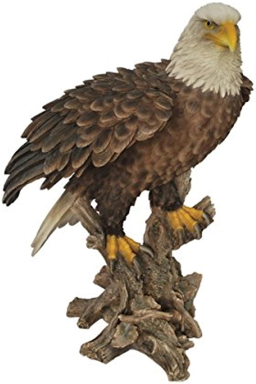 Hi-Line Gift Ltd Bald Eagle on Stump Statue