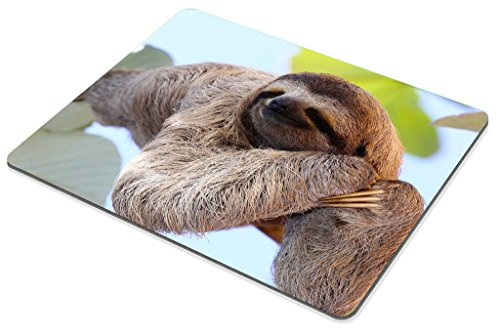 Smooffly Happy Sloth Mouse Pad,Funny Sloth in Costa Rica's Manuel Antonio Park Customized Rectangle Non-Slip Rubber Mousepad Photo #4