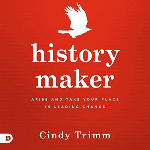 Couverture de History Maker