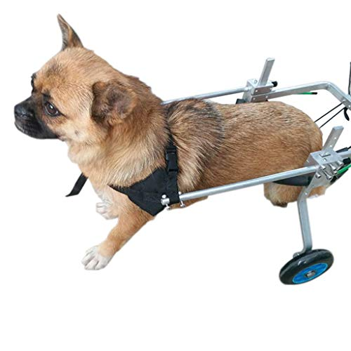 Hunderrolstoel, hondenrolstoel, hometrainer voor hometrainer, verstelbare 4-wiel-roestvrijstalen wagen voor huisdieren/kattenhond rolstoel-achterbeen revalidatie voor gehandicaptenhond 3XS
