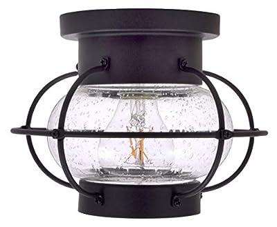 Sylvania General Lighting Sylvania Essex Cage Light, LED, Semi-Flush Mount, Dimmable Bulb Included Vintage Fixture, Antique Black