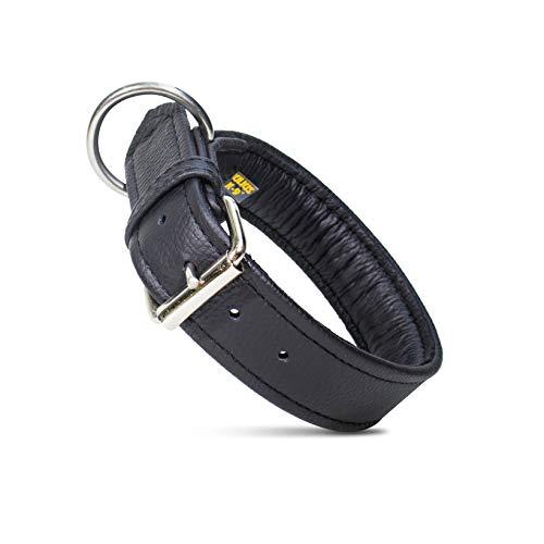 Julius-K9 Collar de Cuero Eco, 40 mm x 55 cm