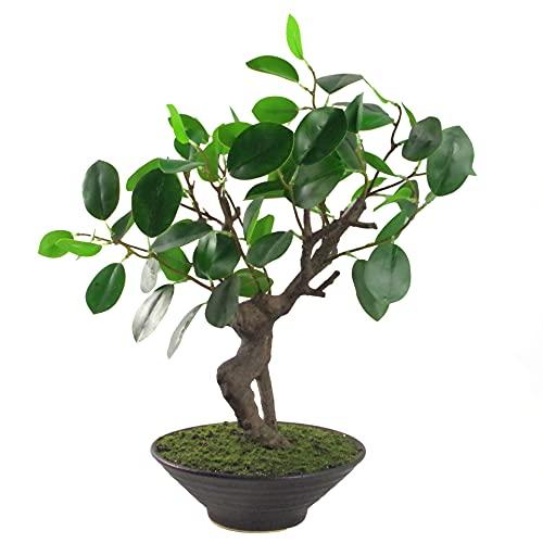 Leaf Árbol de bonsái pequeño Artificial