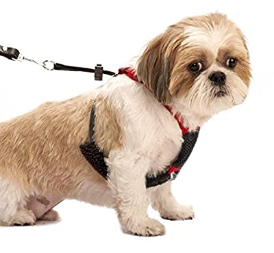 SPORN! Nylon Non Pulling Dog Harness, Small, Red from Yuppie Puppy Pet Products Inc