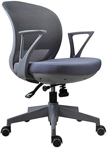 WYL Sedia da Ufficio ergonomica/Sedia da Ufficio e-Sportiva/Poltrona Girevole, Poltrona Elegante e Traspirante Sedia per Computer, Multi-Colore Opzionale (Size : Grey)