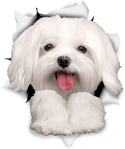 Lindo perro maltés etiqueta engomada decoración cubierta de la decoración rasguño calcomanía portátil camión motocicleta auto colorido pegatina accesorios (Size : 20cm)