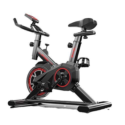 GOYAN Bicicleta Estáticas para Fitness, Bicicleta Spinning