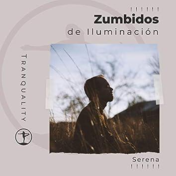 ! ! ! ! ! ! Zumbidos de Iluminación Serena ! ! ! ! ! !