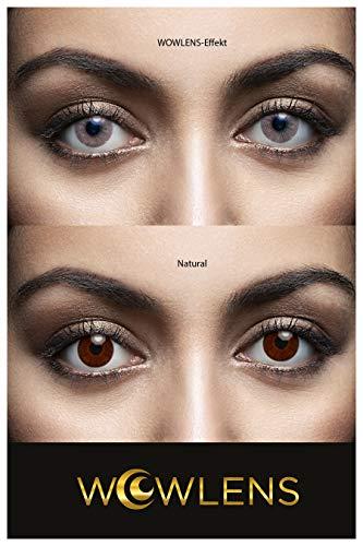WOWLENS Sehr stark deckende und natürliche graue Kontaktlinsen farbig SYDNEY GREY + Behälter I 1 Paar (2 Stück) I DIA 14.00 I 0.00 Dioptrien I ohne Stärke