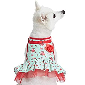 Blueberry Pet 2021 New Soft & Comfy Spring Scent Inspired Floral No Pull Mesh Dog Costume Harness Dress, Turquoise, Chest Girth 19″-21″, Small, Adjustable Harnesses for Dogs