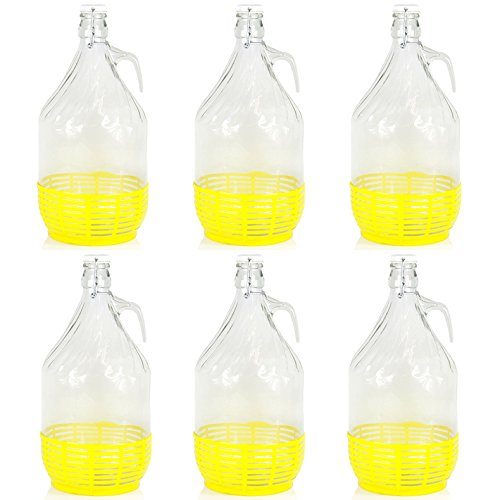 6 x 5L Weinballon Glasballon gut schließbarer Bügelverschluss Glasflasche