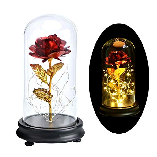 Lucoss Rosa estabilizada, Rose La Bella y la Bestia 24 K Gold Rose Flower with LED Light String Gift Women Girls on Birthday Valentine's Day Mother's Day Christmas Holiday Powered by 3 x AAA Batteries