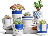 Maceta colgante de cerámica de 8 cm con platillo fijo, juego de 6, macetero de cactus de estilo japonés pequeño redondo bonsái, ideal como regalo para el hogar, la oficina y el jardín (sin plantas)