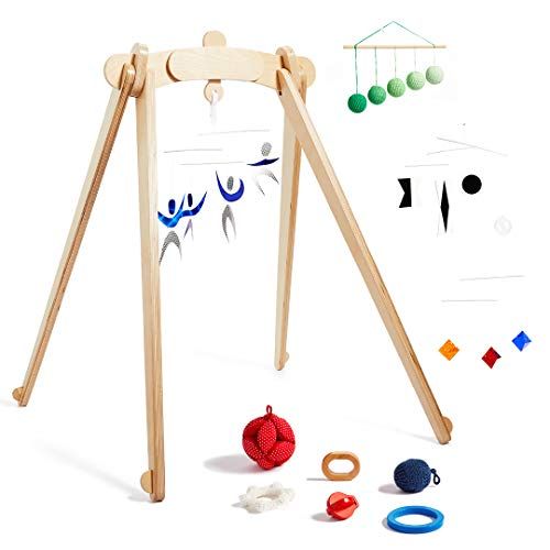 Activity Gym by Monti Kids Product Image