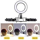 DAUERHAFT Luz de Relleno LED Segura para luz de Relleno portátil, Fotografía