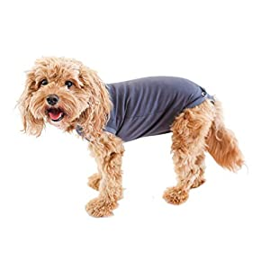 BellyGuard – Dog Recovery Onesie – Cone Alternative – After Surgery Wear