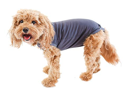 Belly Guard Dog Recovery Onesie - Cone, E Collar Alternative - After Surgery Wear (X-Small, Grey)