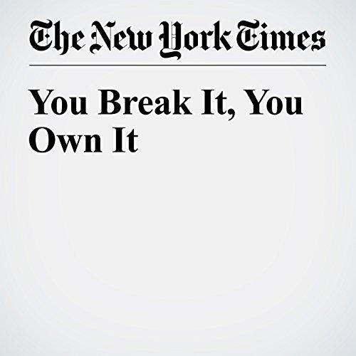 You Break It, You Own It cover art