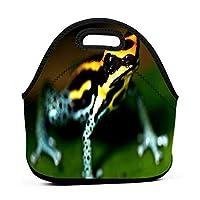 Colorful Frog 保温再利用可能おポータブル弁当箱ランチトートバッグ食事袋子供大人ユニセックス