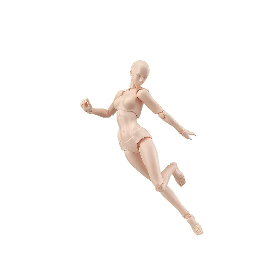 COLOR-LILIJ Drawing Model and Action Figures Body for Artists Action Figure Model Human Mannequin Man Woman Kits, Drawing, Painting, Sketching, Improve Drawing Skills (US Stock)