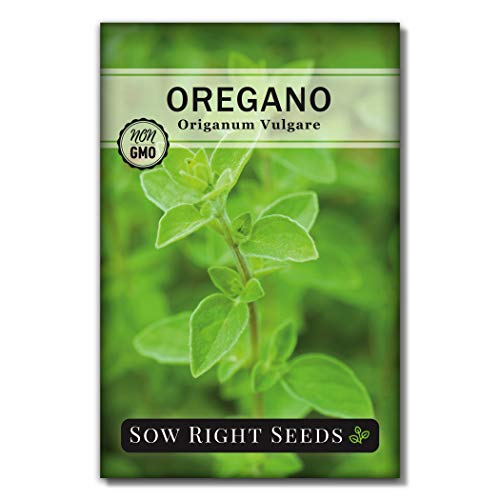 Sow Right Seeds - Oregano Seed for Planting; Non-GMO Heirloom; Instructions to Plant and Grow a Kitchen Herb Garden, Indoor or Outdoor; Great Gardening Gift (1)